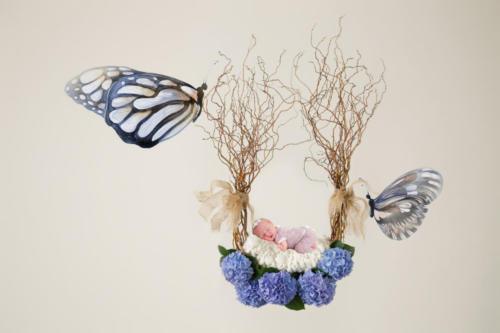 Digital Hanging Nest Butterfly Prop-81